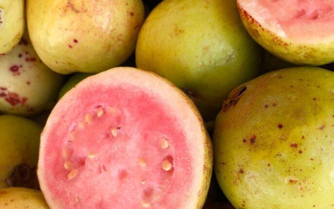 فاكهة الجوافة