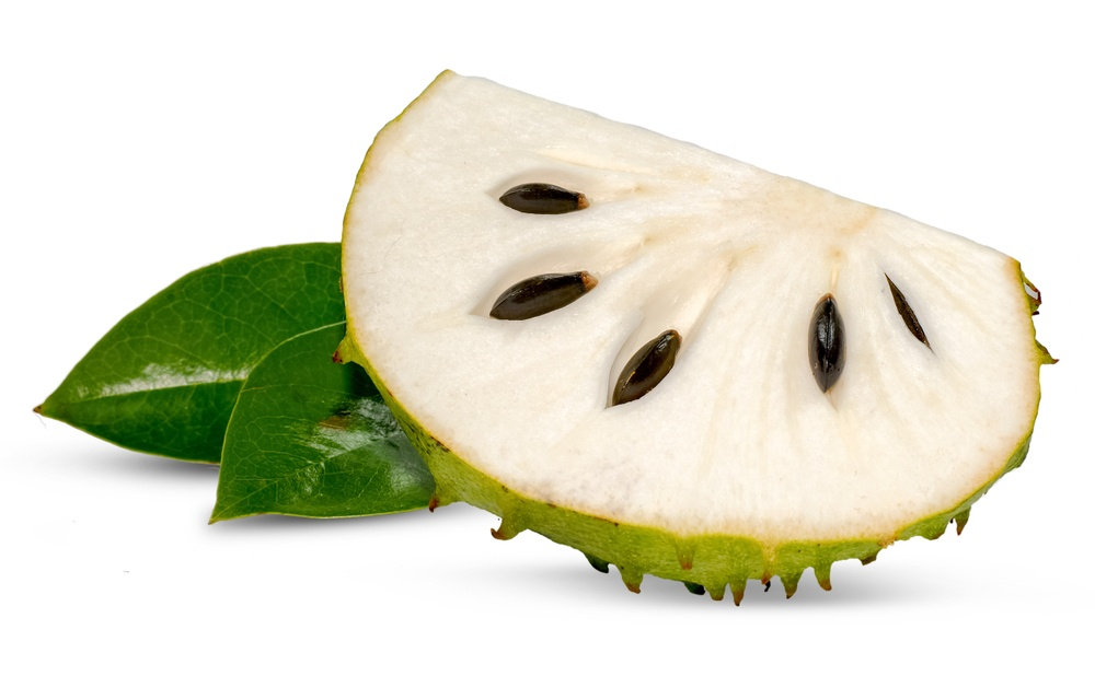 فاكهة السرسوب - الغرافيولا - القشطة الشائكة