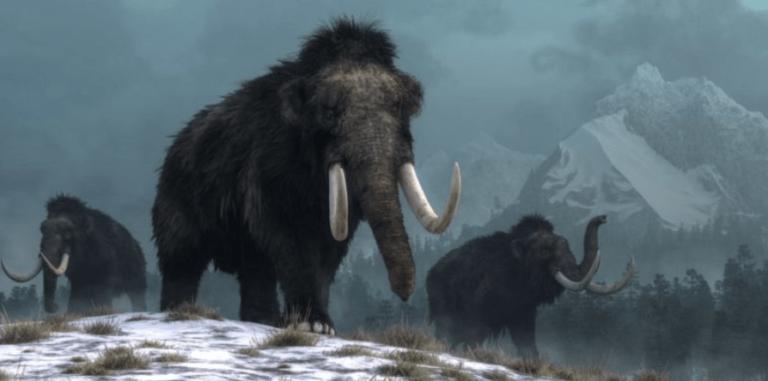 كيف عاشت الكائنات في العصر الجليدي : حقائق مدهشة