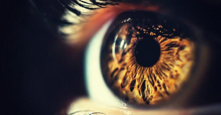 حقائق عن العين البشرية : كيف تعمل وماهي مكوناتها
