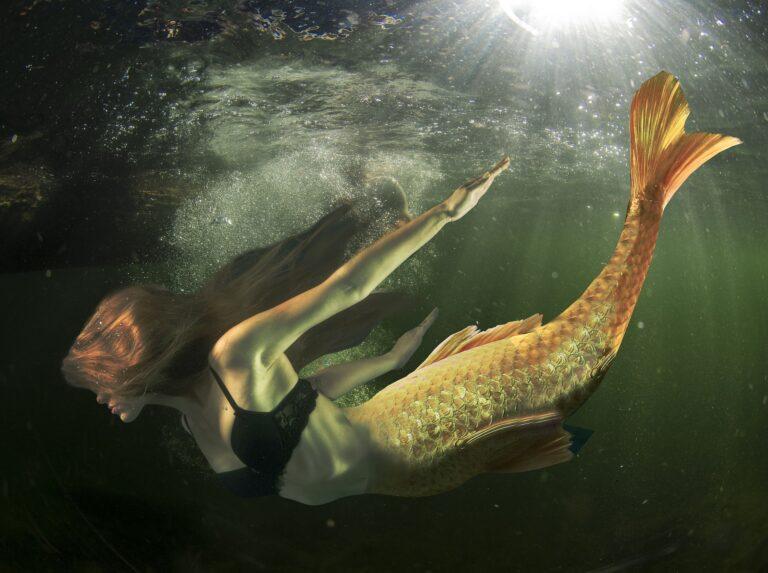حوريات البحر : حقيقة أم مُجرَّد خيال من نسج البشر